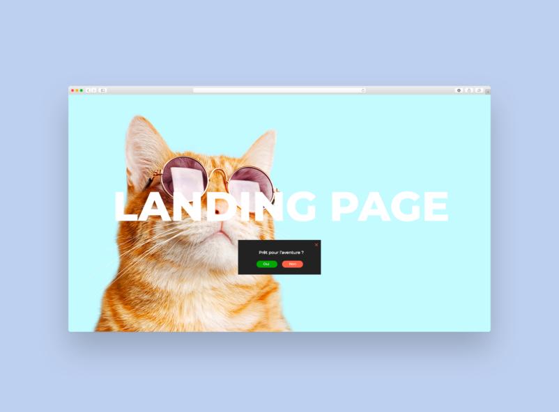 Illustration de landing page